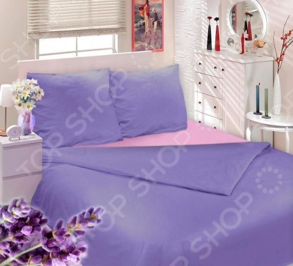 Комплект постельного белья Сова и Жаворонок «Прованская лаванда»