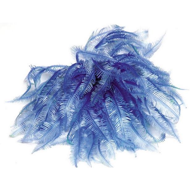 фото Мягкий коралл DEZZIE «Ульмо»
