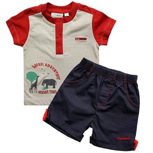 Купить Комплект: футболка и шорты WWW Safari. Цвет: серый