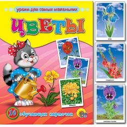 Купить Цветы. 16 обучающих карточек
