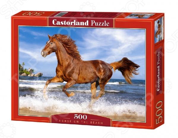 Пазл 500 элементов Castorland «Лошадь»Пазлы (101–500 элементов)<br>Пазл 500 элементов Castorland Лошадь это красочный пазл, который позволит вашему ребенку создать прекрасную картину, а так же развлечет всю семью. Соберите этот шедевр и вы сможете украсить им стену, закрепить на столе, либо на любой другой поверхности. На собранных картинах ваш ребенок сможет увидеть прекрасную лошадь. Пазлы изготавливаются из качественного и безопасного материала, вы сможете собирать его вместе с детьми. Игра отлично развивает мелкую моторику пальцев, логику и пространственное мышление.<br>