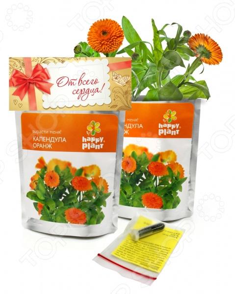 Набор для выращивания Happy Plant «Календула»