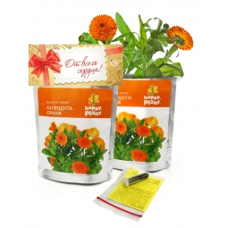 Купить Набор для выращивания Happy Plant «Календула»