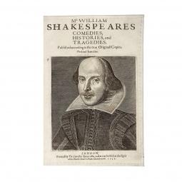 фото Обложка для паспорта Mitya Veselkov «Шекспир»