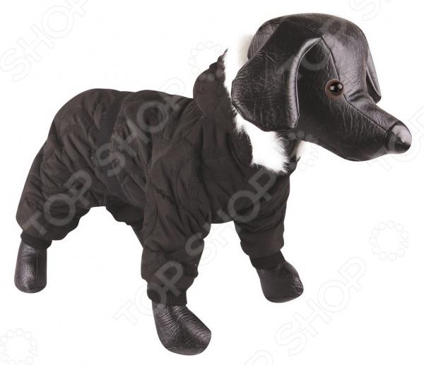 Комбинезон для собак DEZZIE «Колин»