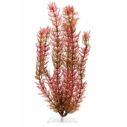 фото Растение искусственное для аквариума Tetra «Перистолистник». Размер: 15 см