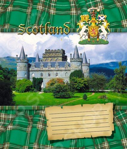 Тетрадь в клетку Пересвет «Шотландия». В ассортименте