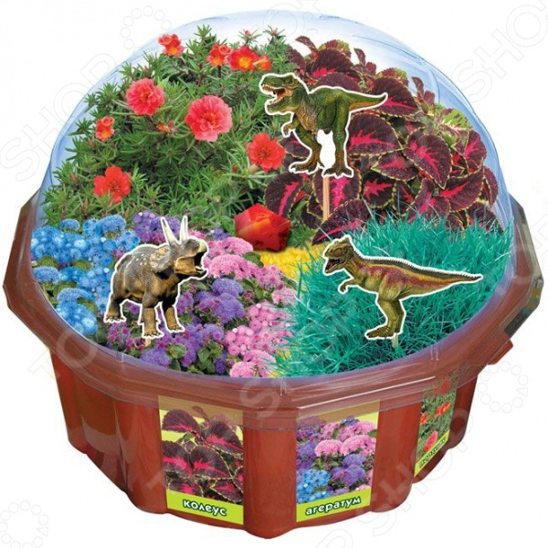 Набор для выращивания Ранок «Вырасти меня. Парк динозавров»Детские наборы для выращивания кристаллов и растений<br>Набор для выращивания Ранок Вырасти меня. Парк динозавров станет замечательным подарком для вашего любознательного ребенка. В комплект входит все необходимое для того, чтобы вырастить настоящий эко-сад, по которому будут гулять динозавры. Сад можно украсить камушками или цветным песком. Набор для выращивания Ранок Вырасти меня. Парк динозавров поможет развить у малыша чувство заботы и внимательность к деталям. Кроме того, такой сад станет отличным дополнением его комнаты или оригинальным подарком для мамы с папой.<br>