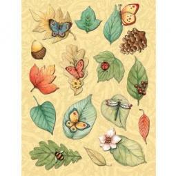 Купить Стикер-украшение K&Company «Секреты природы»