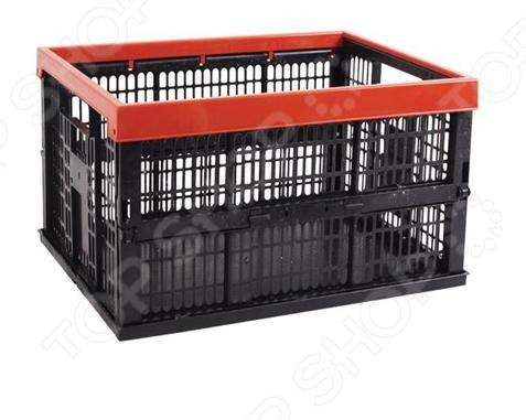 Ящик для хранения продуктов Archimedes 91874