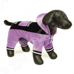 Костюм спортивный для собак DEZZIE «Тай»