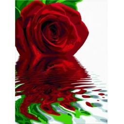 фото Набор для рисования по номерам Schipper «Отражение розы»
