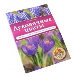 Купить Луковичные цветы