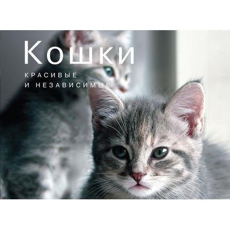 Купить Кошки. Красивые и независимые