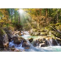 Купить Пазл 2000 элементов Castorland «Лесной ручей»