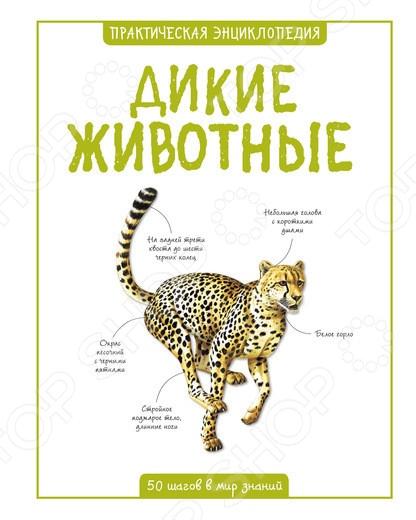 Дикие животные. Практическая энциклопедияЖивотные. Растения. Природа<br>Эта книга рассказывает о строении и образе жизни слона, крокодила, акулы и других удивительных созданий. Благодаря наглядным иллюстрациям и познавательным текстам читатель сможет легко ориентироваться в мире диких животных.<br>