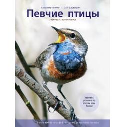 Купить Певчие птицы. Энциклопедия (со звуковым модулем)