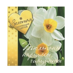 фото Тюльпаны, нарциссы, гиацинты