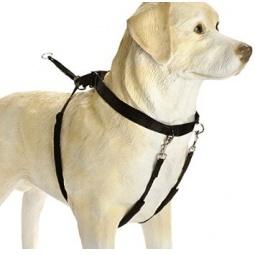 фото Шлейка для собак Beeztees Chest&Neck. Размер: 30х42 см