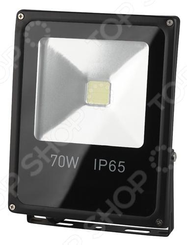 Прожектор светодиодный Эра LPR