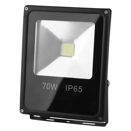 Купить Прожектор светодиодный Эра LPR