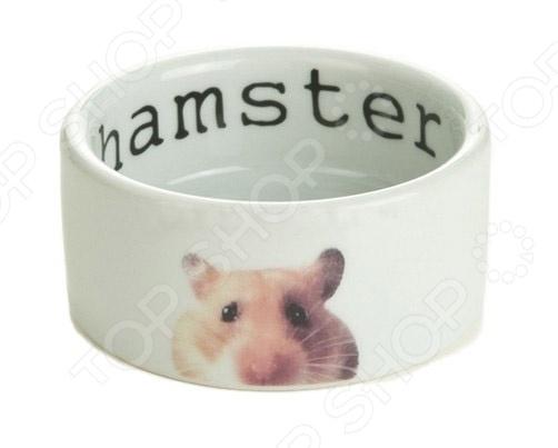 beeztees 801700 Hamster 24927