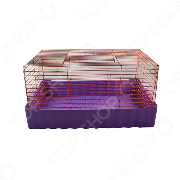 Клетка для кроликов ZOOmark 640. В ассортиментеКлетки. Переноски<br>Товар продается в ассортименте. Цвет изделия при комплектации заказа зависит от наличия товарного ассортимента на складе. Клетка для кроликов ZOOmark 640 станет замечательным жилищем. Приобретая такой уютный домик, вы дарите любимым кроликам простор, комфорт и отличное место для игр. Клетка изготовлена из экологически чистых материалов, абсолютно безвредна для животных и очень прочна. Металлические жердочки станут надежной защитой для кроликов, к ним также можно легко прикрепить кормушки и самые разнообразные игрушки.<br>