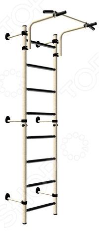 Детский спортивный комплекс Карусель «Тинейджер»Детские тренажеры<br>Детский спортивный комплекс Карусель Тинейджер замечательная гимнастическая лестница с передвижным турником, позволяющая выполнять упражнения на все группы мышц. Это способствует укреплению детского развивающегося организма и повышению выносливости. Высота стоек без учета турника 2,08м, максимальная высота комплекса 2,27м. Ширина ступени 490 мм, ширина захвата турника 860 мм. Максимальная нагрузка 100 кг.<br>