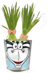 ����� ��� ����������� Happy Plant ������