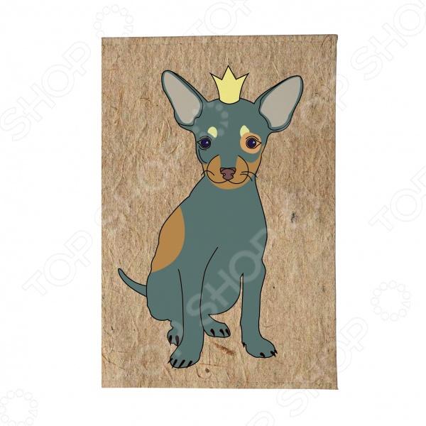 Обложка для автодокументов Mitya Veselkov «Той в короне» обложка для автодокументов кожаная mitya veselkov гагарин