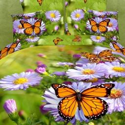 фото Комплект постельного белья Domomania Nectar. Satin Fotoprint. Евро