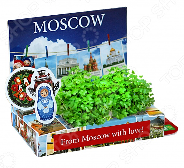 Набор подарочный для выращивания Happy Plant «Живая открытка: Москва №2» набор подарочный для выращивания happy plants живая открытка букет роз