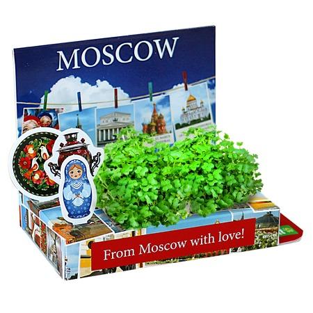 Купить Набор подарочный для выращивания Happy Plant «Живая открытка: Москва №2»