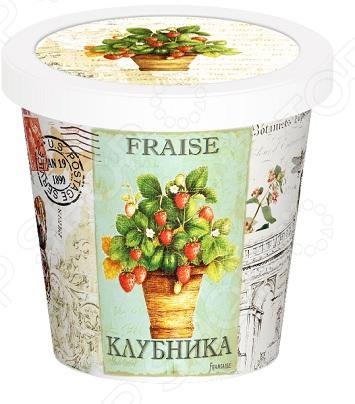 Набор для выращивания Rostokvisa «Клубника»