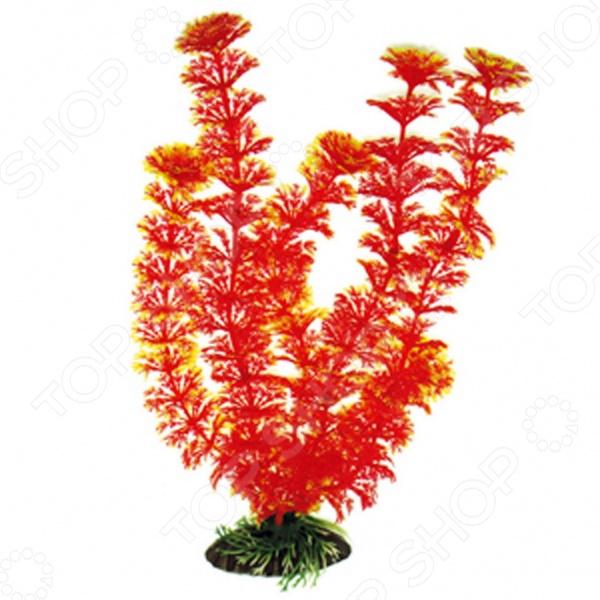 Искусственное растение DEZZIE 5602060Аквариумный дизайн<br>Искусственное растение DEZZIE 5602060 предназначается для создания неповторимого ландшафта дна аквариумов, что позволит подчеркнуть таинственность и необычность подводного мира. Пластиковые растения имеют устойчивое дно, которое не требует дополнительного утяжеления и легко устанавливается в грунт. Они очень практичны в использовании, имеют стойкую к воздействию воды окраску и не требуют обременительного ухода. К тому же, их можно легко достать и протереть обычной тряпочкой во время уборки аквариума.<br>