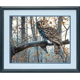 Купить Набор для рисования по номерам Dimensions «Мудрая сова»