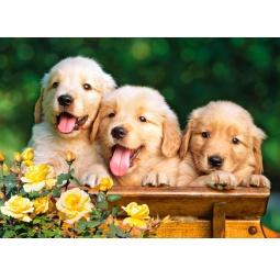 Купить Пазл 180 элементов Castorland «Три щенка»