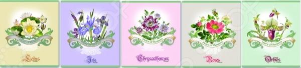 Тетрадь лакированная Феникс «Цветы». В ассортименте
