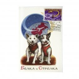 фото Обложка для паспорта Mitya Veselkov «Белка и Стрелка»