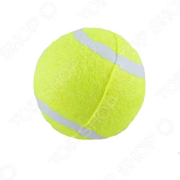 все цены на  Мяч для большого тенниса Start Up TB-GA03  онлайн