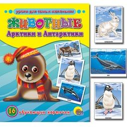 фото Животные Арктики и Антарктики. 16 обучающих карточек