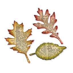 фото Форма для вырубки Sizzix Bigz Die Листья
