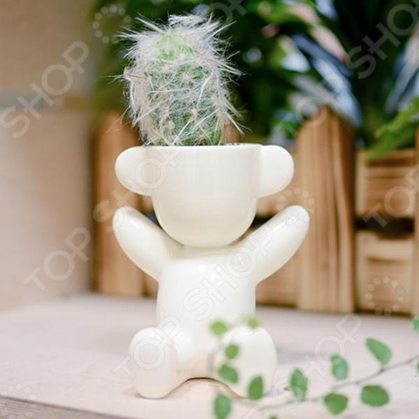 Набор для выращивания Экочеловеки Eco «Малыш с ушками». В ассортименте