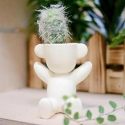 фото Набор для выращивания Экочеловеки Eco «Малыш с ушками». В ассортименте