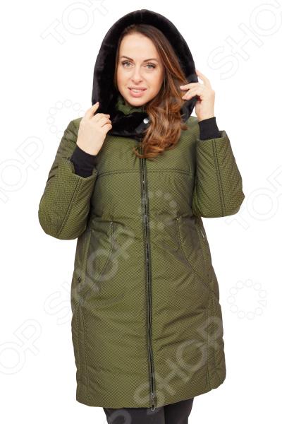 Пальто D`imma «Берти». Цвет: зеленыйВерхняя одежда<br>Пальто D imma Берти сшито с учетом всех особенностей женской фигуры. Оно идеально подойдет для женщин любого возраста и комплекции. Однако вещь особенно хороша для пышных дам, поскольку продуманный дизайн изделия позволяет скрыть недостатки и подчеркнуть достоинства фигуры.  Крой свободный, рельефные строчки создают необычный рисунок и красиво подчеркивают линии фигуры, боковые карманы.  Универсальная длина выше колена.  Ветрозащитный клапан.  Вшивной рукав. Рукава дополнены трикотажными манжетами.  Необычный эффект создает мелкий абстрактный узор ткани.  Но основным элементом является роскошный воротник-капюшон, отделанный внутри искусственным мехом темного цвета. Благодаря застежке он может принимать различные формы.  На фото с брюками Уран . Пальто сшито из мягко ткани 20 нейлон, 80 полиэстер , наполнитель фабертек выдерживает до -30 градусов. Изделие очень практичное, легкое в уходе, водонепромокаемое, качественные лекала обеспечивают идеальную посадку на женской фигуре, а стеганая ткань имеет эффект пружины , подчеркивает достоинство и скрывает её недостатки. Уникальная модель, которую можно приобрести только на нашем телеканале!<br>