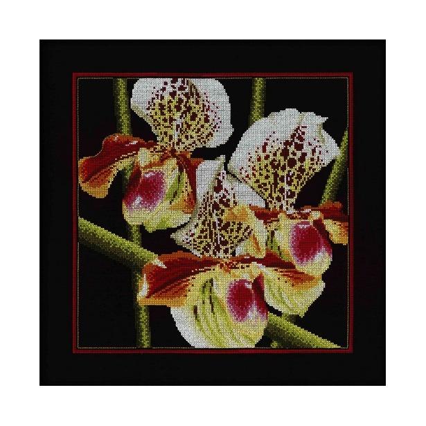 фото Набор для вышивания RTO «Орхидеи»