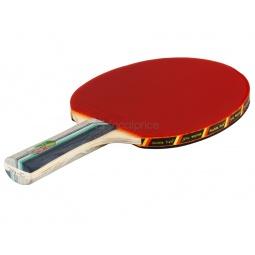Купить Ракетка для настольного тенниса с шариками Double Fish 2A-C