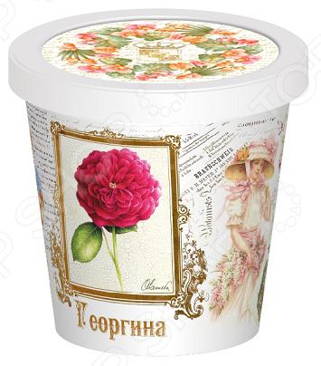 Набор для выращивания Rostokvisa «Георгина»