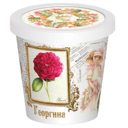 Купить Набор для выращивания Rostokvisa «Георгина»