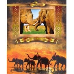 фото Тетрадь в клетку с вырубкой Ульяновский Дом печати «Дикие животные: Слоны»